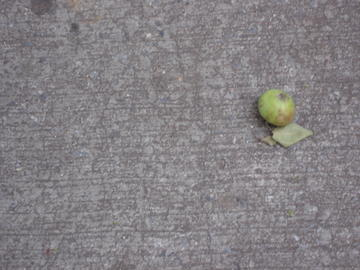 apple on the sidewalk