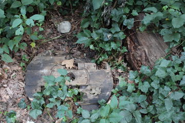 wooden wreckage