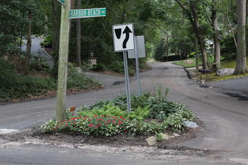 suburban street garden