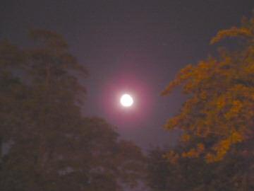 better moon shot.